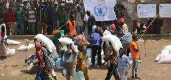 Flygtninge fra Eritrea og Danmarks ansvar.